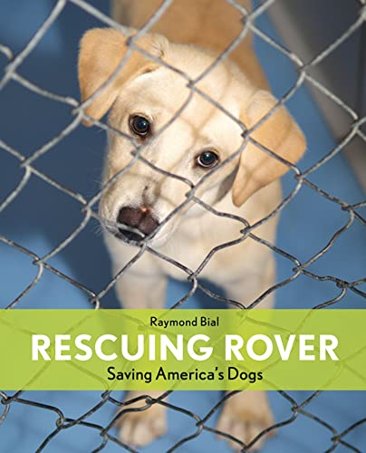 9780547341255: Rescuing Rover: Saving America's Dogs