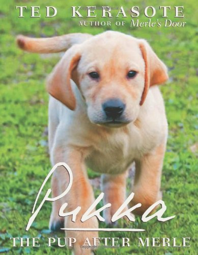 9780547386089: Pukka: The Pup After Merle