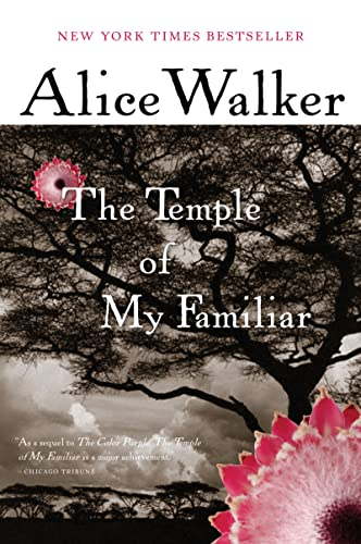 9780547480008: The Temple of My Familiar