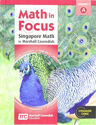 9780547559360: Math in Focus: Singapore Math Student Edition, Grade 6, Volume A