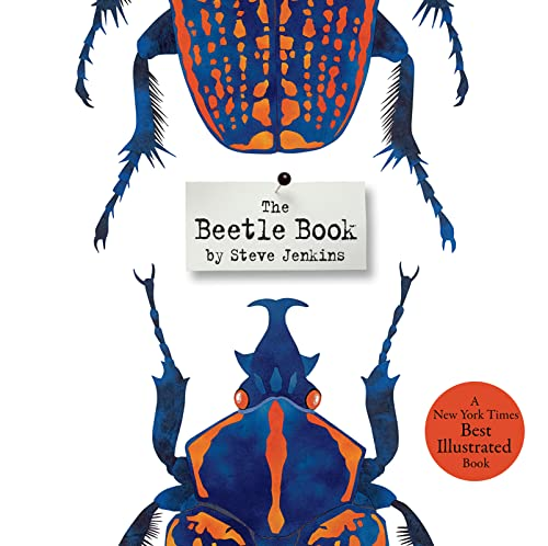9780547680842: The Beetle Book