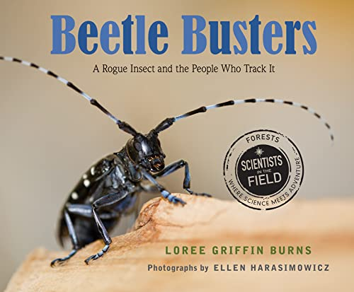 Beetle Busters: Loree Griffin Burns