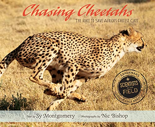 9780547815497: Chasing Cheetahs: The Race to Save Africa's Fastest Cat (Scientists in the Field Series)