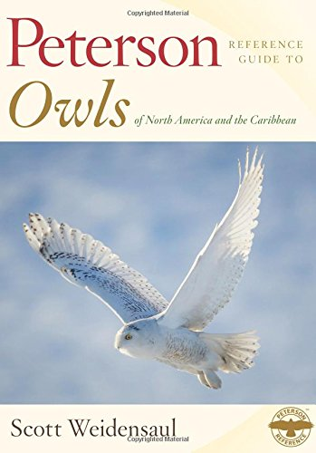 9780547840031: Peterson Reference Guide to Owls of North America and the Caribbean