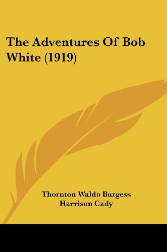 9780548813768: The Adventures Of Bob White (1919)