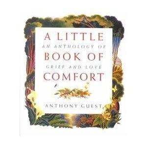 9780551029682: Little Book of Comfort