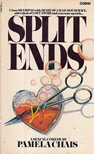 9780552107815: Split Ends