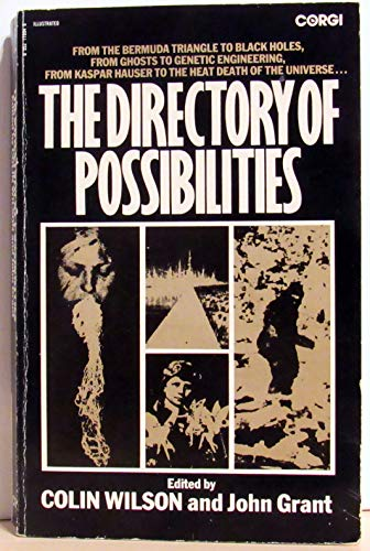 9780552119948: The Directory of Possibilities