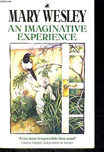 9780552143264: Imaginative Experience