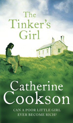 9780552156691: The Tinker's Girl