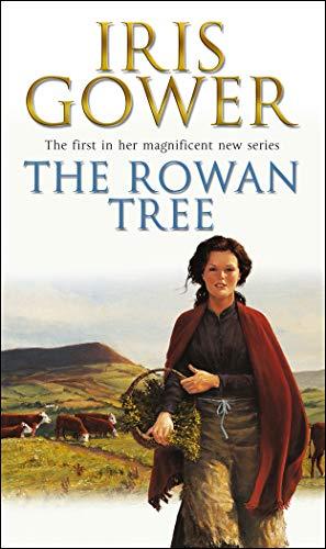 9780552160759: The Rowan Tree