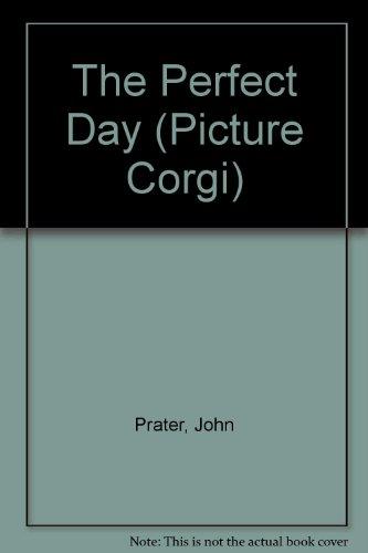 9780552525138: The Perfect Day (Picture Corgi)