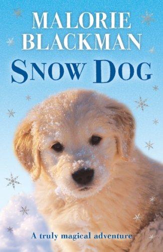 9780552547031: Snow Dog
