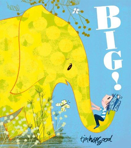 9780552564878: Big!
