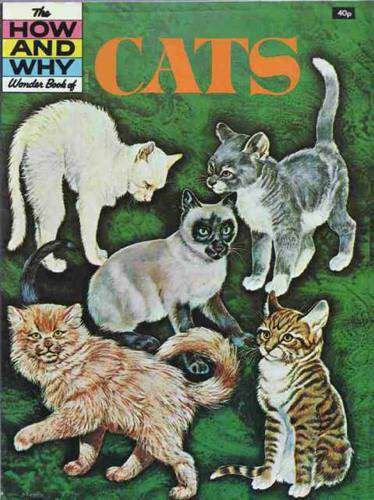 Cats (How & Why) (9780552865708) by King, Angela