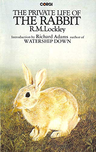 The private life of the rabbit: An: R. M Lockley