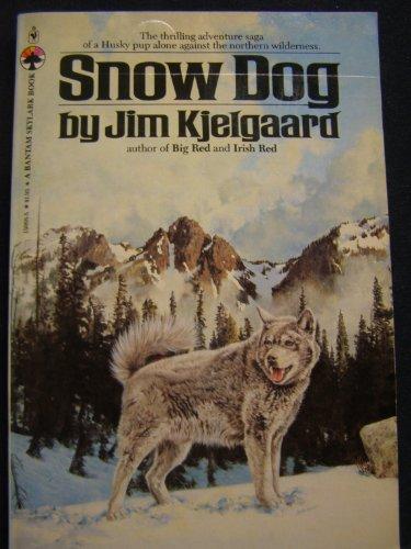 DESERT DOG: Kjelgaard, Jim A.