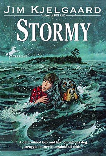 9780553154689: Stormy