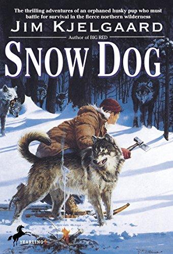9780553155600: Snow Dog