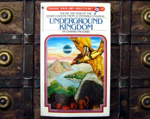 9780553232929: Underground Kingdom (Choose Your Own Adventure 18)
