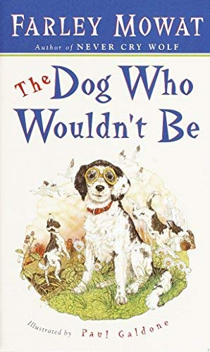 9780553246414: Dog Who Wouldn't Be