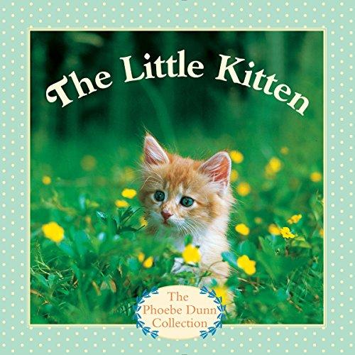 9780553511383: The Little Kitten