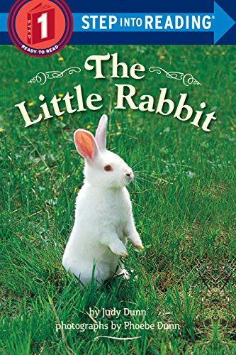 9780553533552: The Little Rabbit (Step into Reading)