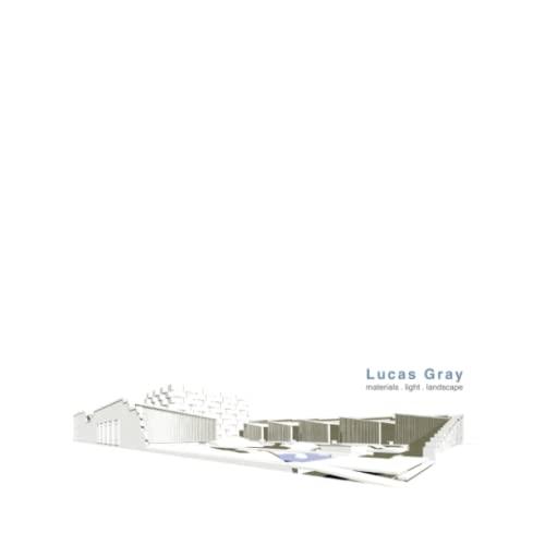 9780557130986: Lucas Gray: material. light. landscape