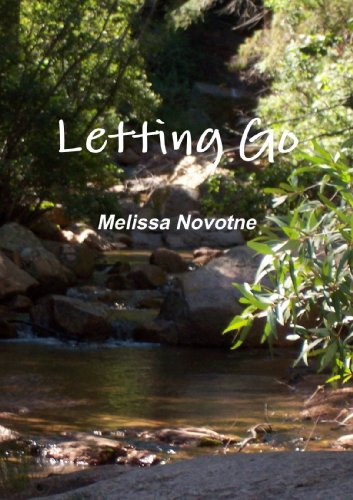 9780557415281: Letting Go