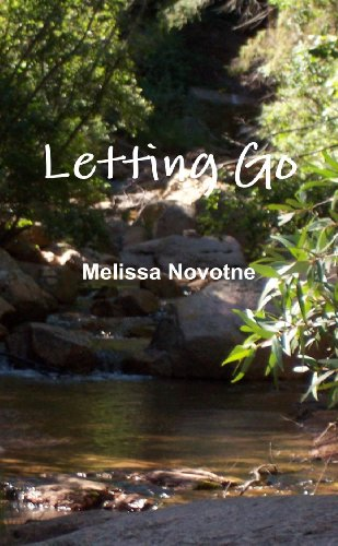 9780557431311: Letting Go