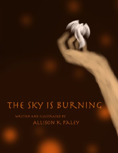 9780557464029: The Sky is Burning