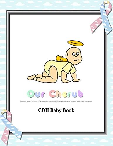9780557504978: Cdh Baby Book