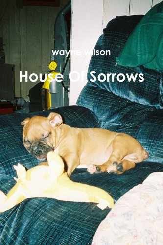 9780557576258: House Of Sorrows