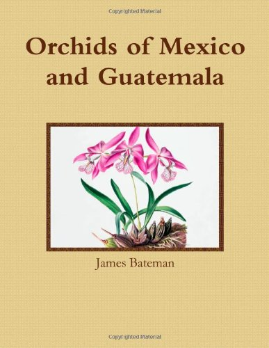 9780557659838: Orchids of Mexico and Guatemala