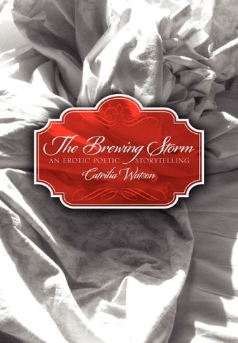 9780557662128: The Brewing Storm