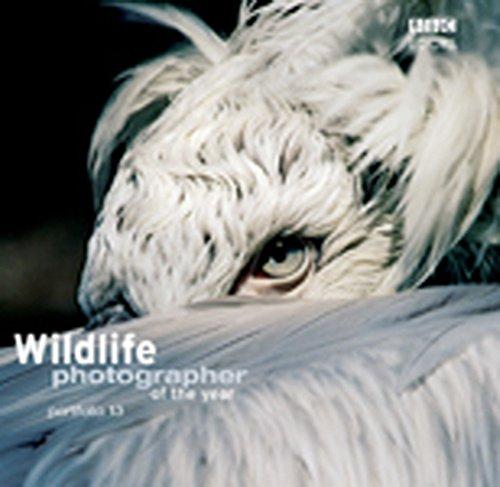 9780563487722: Wildlife Photographer of the Year Portfolio 13