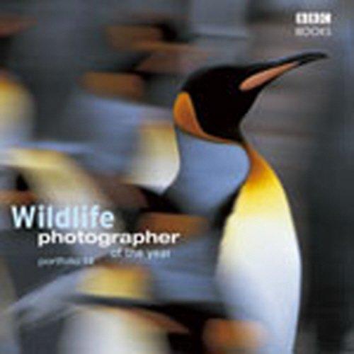 9780563521808: Wildlife Photographer of the Year: Portfolio 14