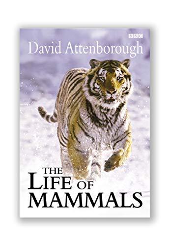 9780563534235: Life of Mammals