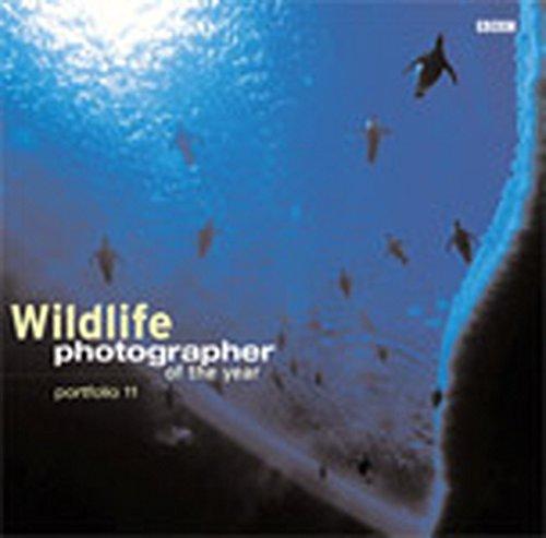 9780563534488: Wildlife Photographer Of The Year Portfolio 11
