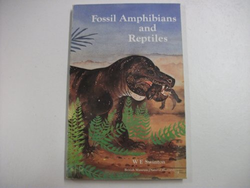 9780565005436: Fossil Amphibians and Reptiles (Publications / British Museum)