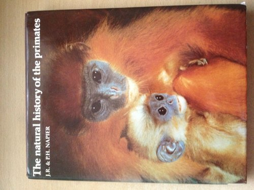 9780565008703: Natural History of the Primates