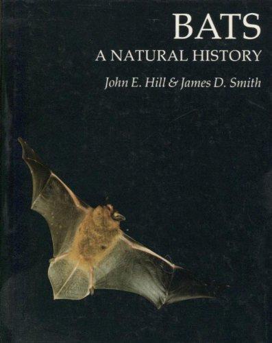 Bats : A Natural History: Hill, John Edwards; Smith, James D.