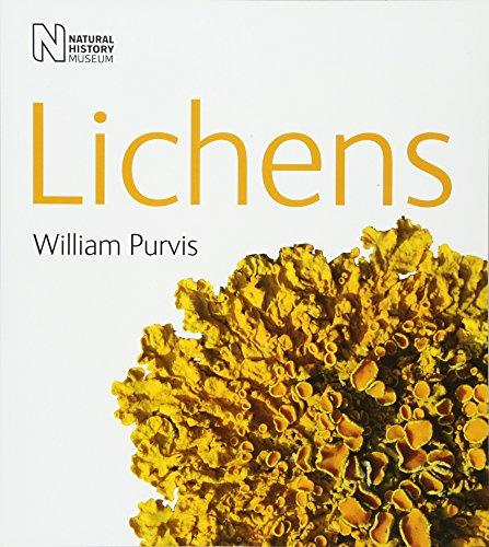 9780565091538: Lichens (Life)
