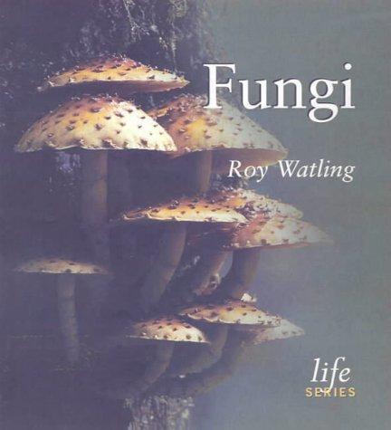9780565091828: Fungi (Life)