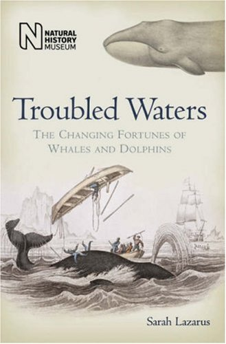 9780565091927: Troubled Waters