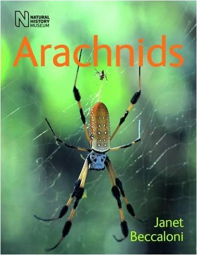 9780565092207: Arachnids