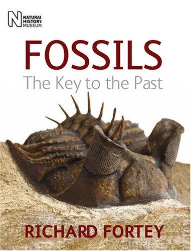 9780565092337: Fossils
