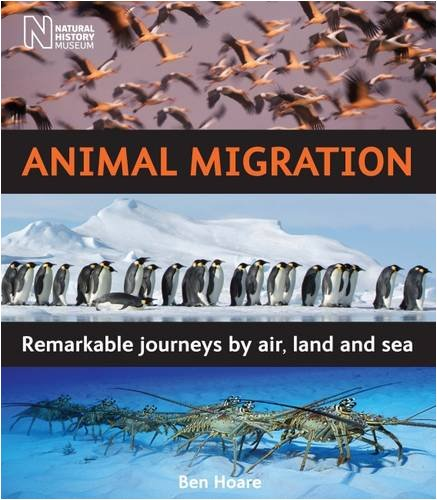 9780565092436: Animal Migration: Remarkable Journeys by Air, Land and Sea