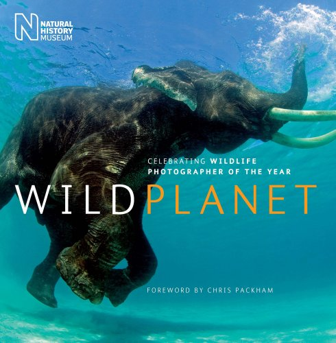 9780565092504: Wild Planet: Celebrating Wildlife Photographer of the Year (Natural History Museum)