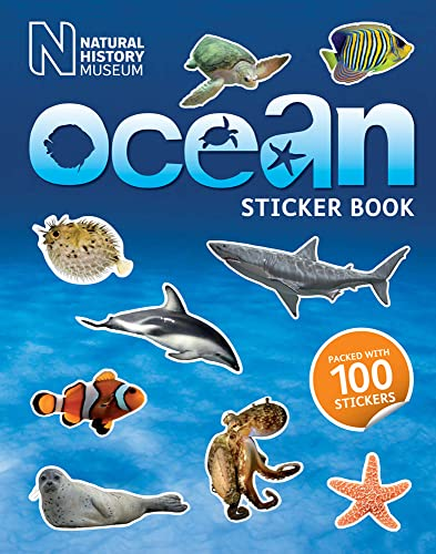 9780565092573: Ocean Sticker Book
